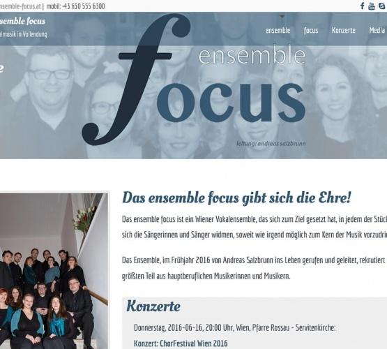 Abb. Screenshot ensemble focus (2016)